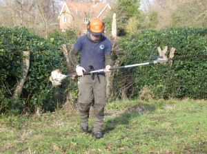 Steven with pole hedge trimmer