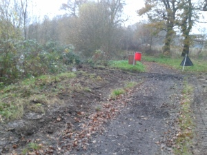 Swan Lake path works - after