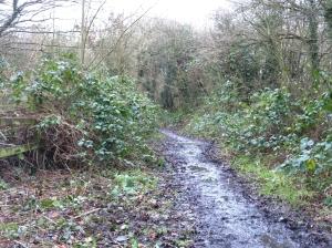Bridleway & footpath before task