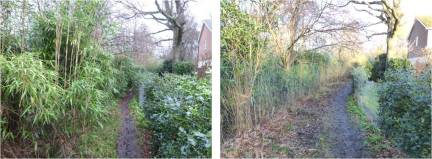 Yateley path SW view before and after