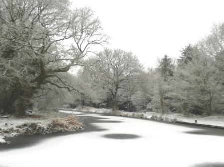 Snowy canal at Ash Lock Cottage