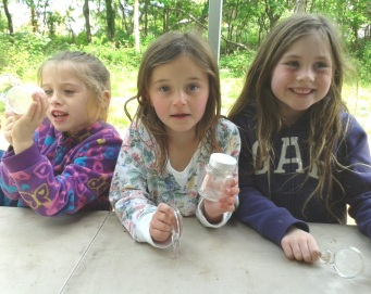 Young Bug Hunters at Fleet Pond Wildlife Day