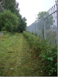 Grant's Moor Hedge clearance
