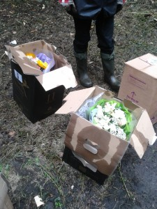 Dumped flowers found by Southwood