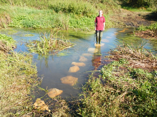 Sarah trying out the new stepping stones...in waders!