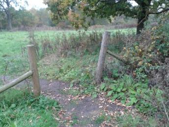 Old gap on footpath
