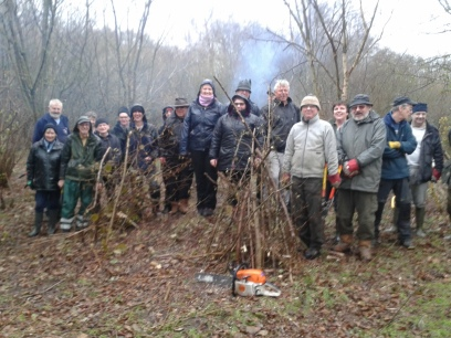 Soggy volunteers by coppiced hazel stools