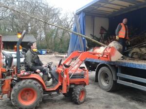 George unloading 5m trees