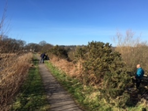 Original overgrown path