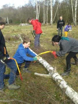 RSPB Wildlife Explorers processing timber???