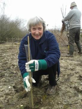 Kathy tree planting