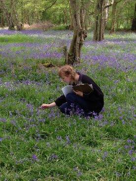 Trainee Katie surveying bluebells