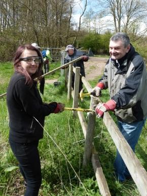 Removing damaged fence