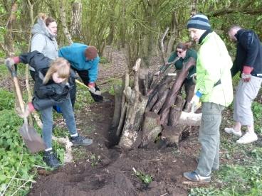 Creating stag beetle stumpery