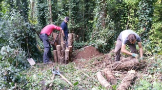 logs going into place