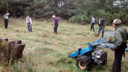 Volunteers hay cutting, can you spot the mug of tea?