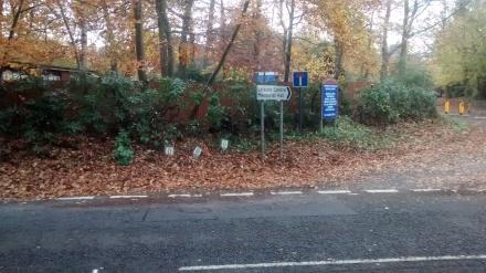 Entrance to Hawley Lane cut back