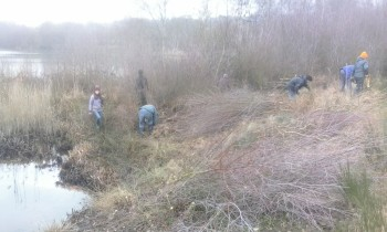 Volunteers starting to cut back the scrub