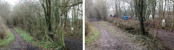 View north along bridleway before and after task