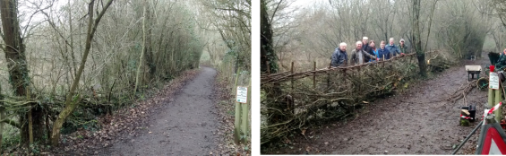 View north along footpath before and after task
