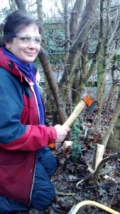 Suzie pleaching a field maple
