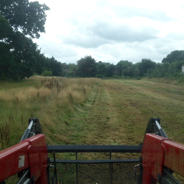 A half mown meadow and the back of a tractor.