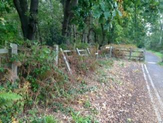 Damaged fence before.