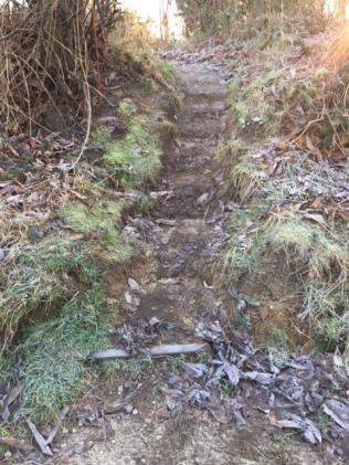 Mud Steps