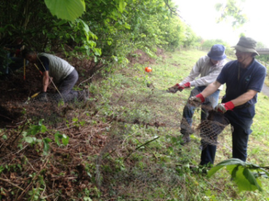 Volunteers removing old rabbit fencing from the Surrey Hills