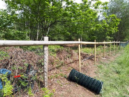 Halfway students pcukridge fence