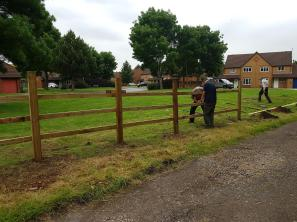 Fencing coming along nicely