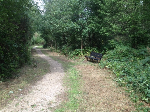 Bench path view
