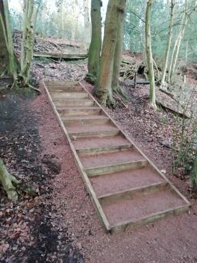New flight of steps