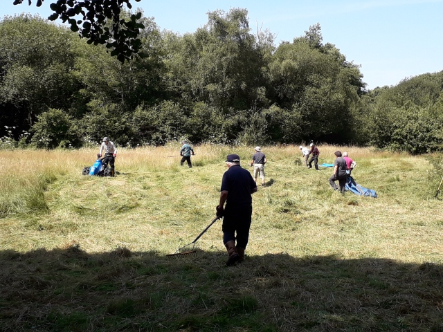 Blackwater Reach vols hay cutting