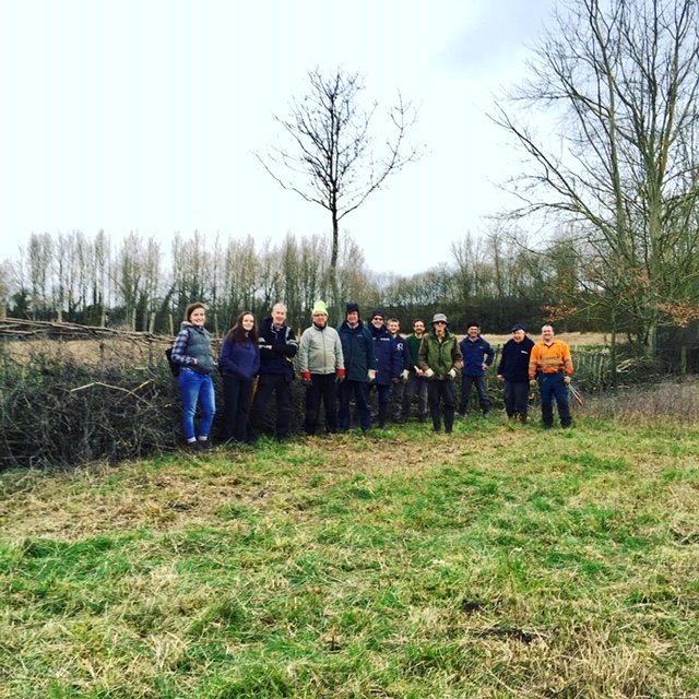 Hedge laying volunteers feb 20